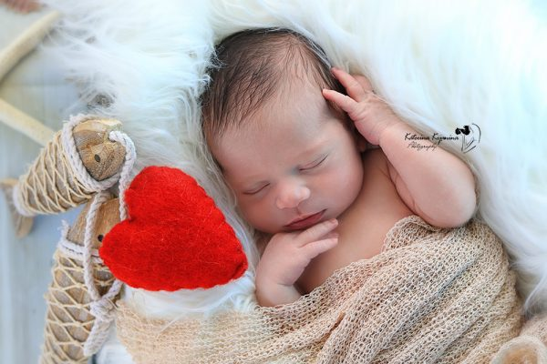 Newborn baby photography sessions Palm Coast Florida